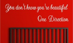ONE DIRECTION VINYL WALL ART STICKERS GRAPHICS